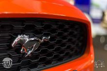 Ford Mustang close up, muscle car, SAB 2015